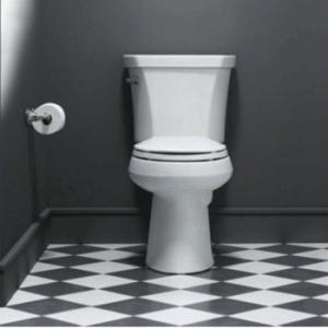 KOHLER Wellworth Toilet Review