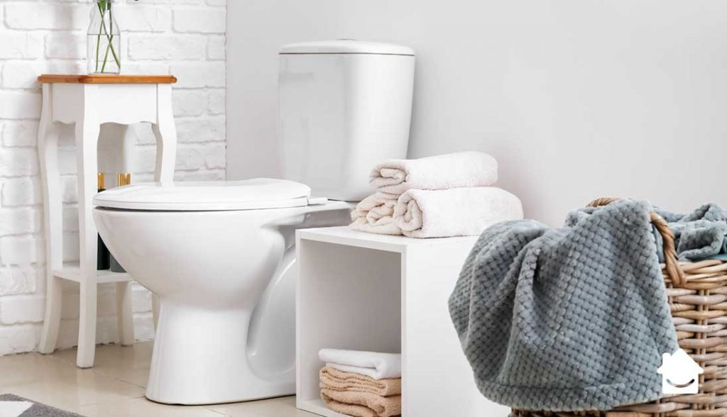 Best Natural Toilet Bowl Cleaner