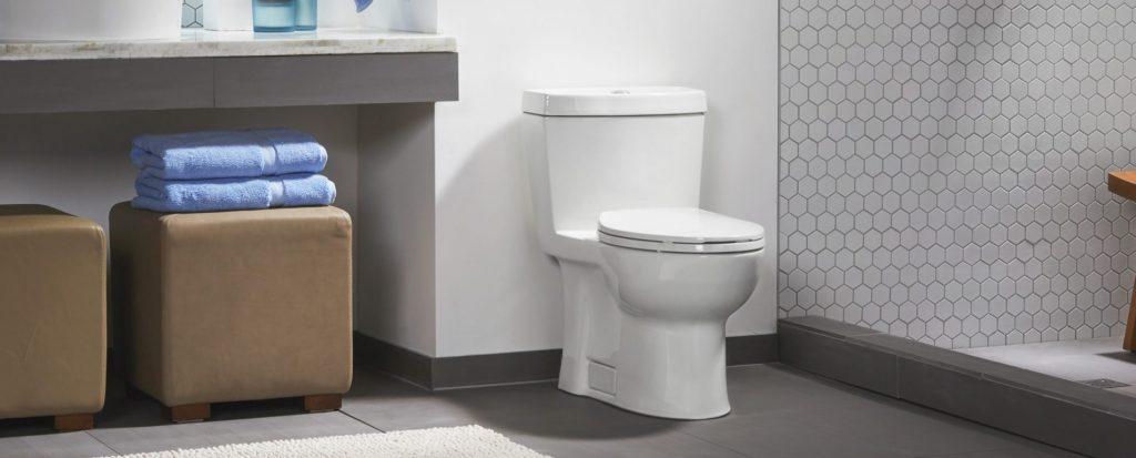 Niagara Stealth Toilet Review