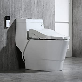 woodbridge Bidet toilet combo