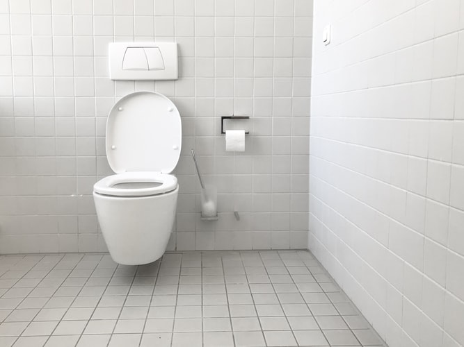 best wall-hung toilets