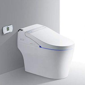 best oversized toilets